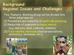 background regional issues and challenges