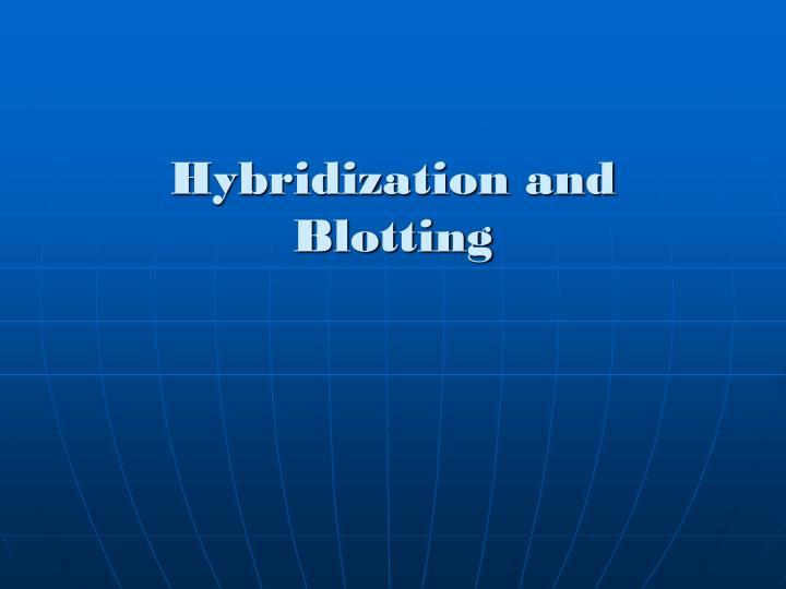 Hybridization and Blotting