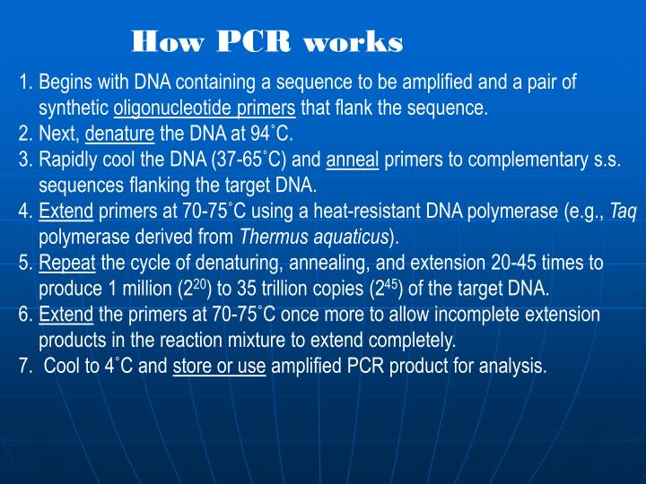 How PCR works