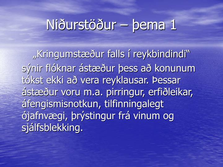 Niðurstöður – þema 1