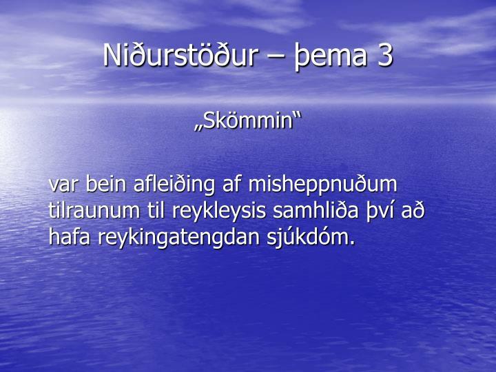 Niðurstöður – þema 3