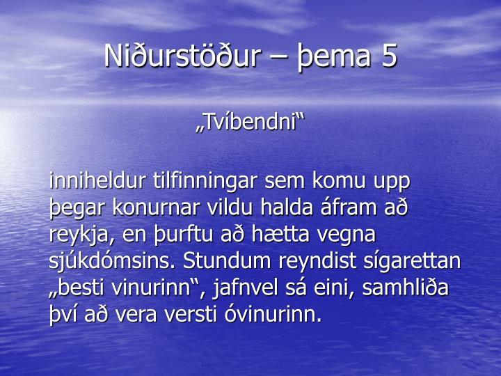Niðurstöður – þema 5