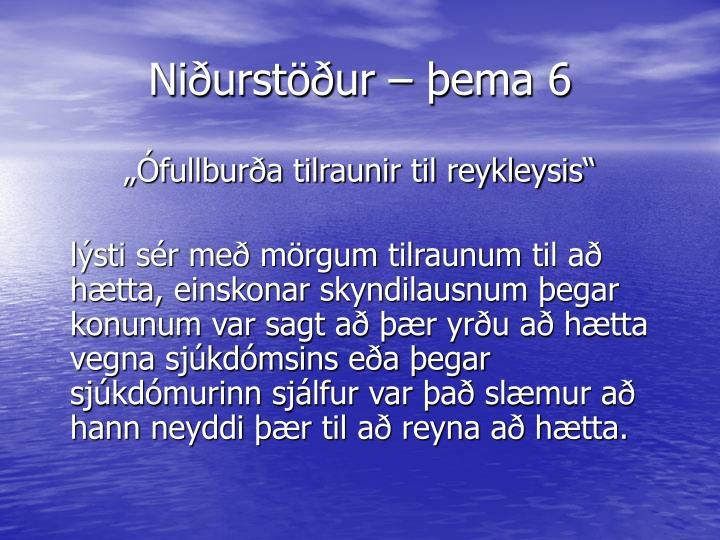 Niðurstöður – þema 6