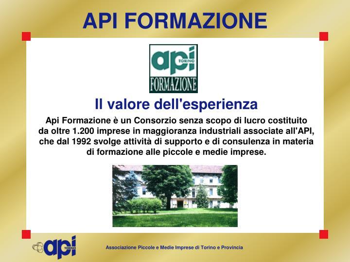 API FORMAZIONE