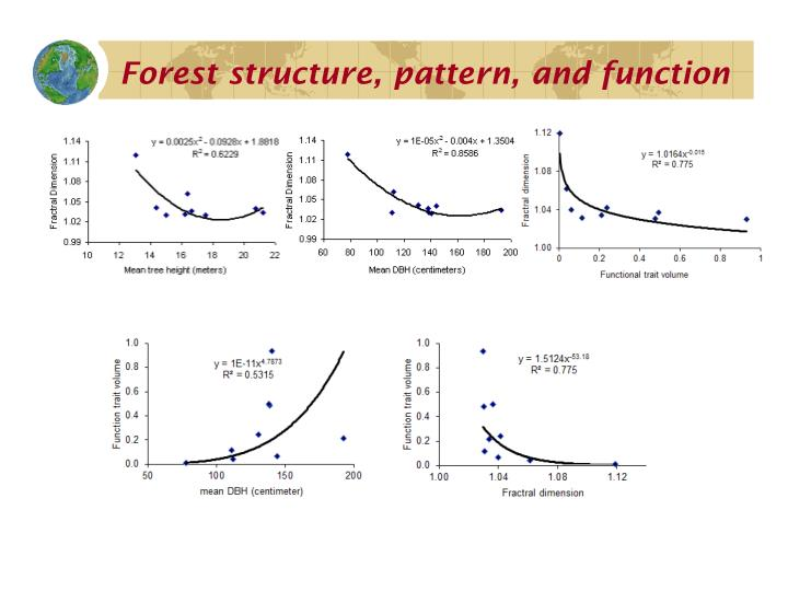 Forest structure, pattern, and function