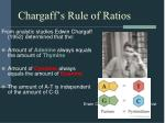 chargaff s rule of ratios
