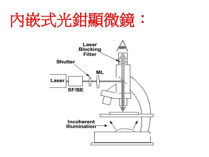 內嵌式光鉗顯微鏡: