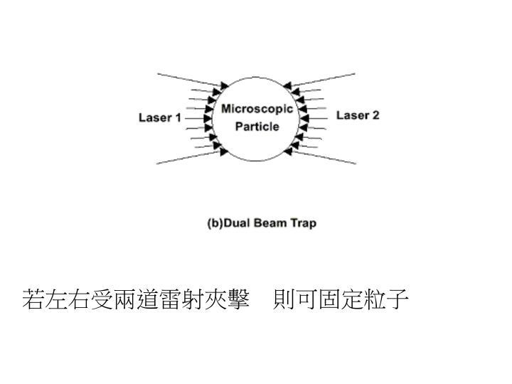 若左右受兩道雷射夾擊 則可固定粒子