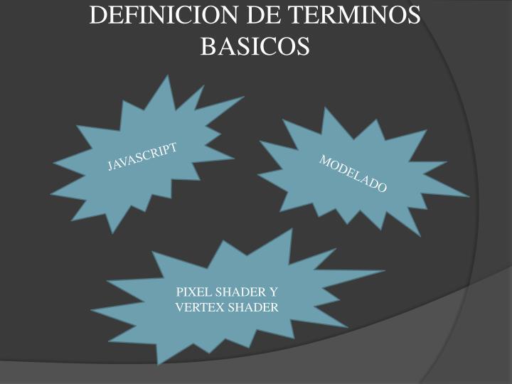 DEFINICION DE TERMINOS BASICOS