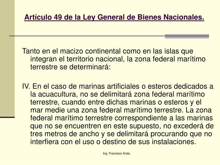 Artículo 49 de la Ley General de Bienes Nacionales.