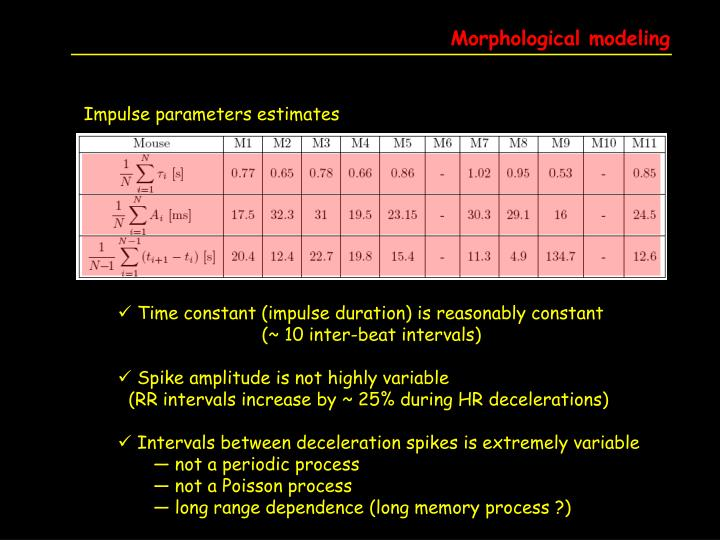 Morphological modeling