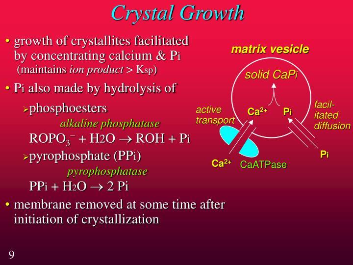 Crystal Growth