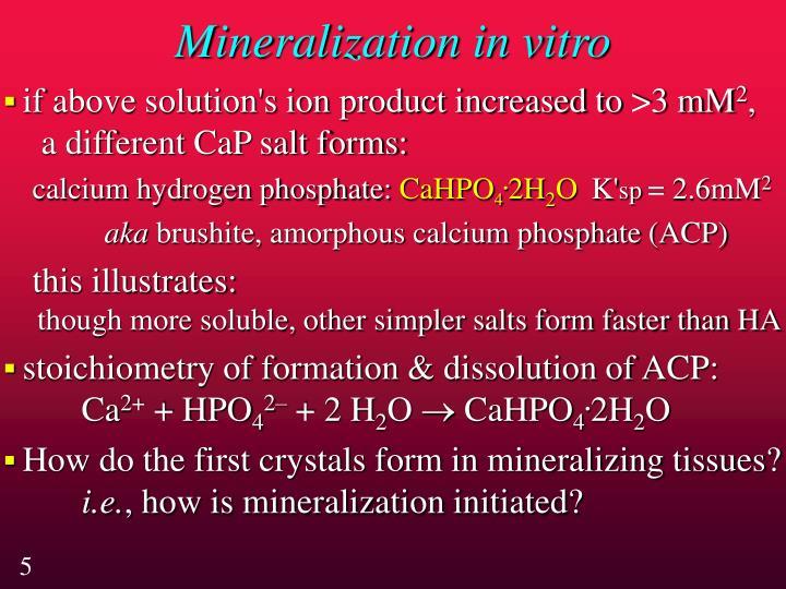 Mineralization in vitro