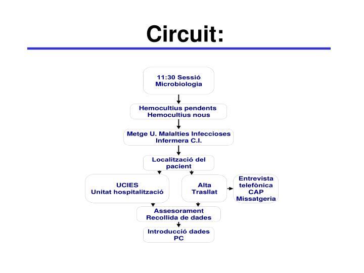 Circuit: