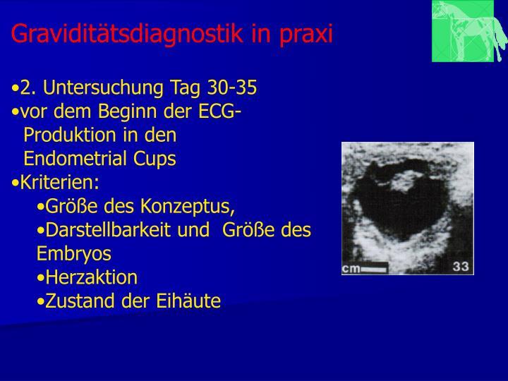 Graviditätsdiagnostik in praxi