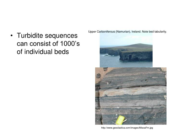 Upper Carboniferous (Namurian), Ireland. Note bed tabularity.