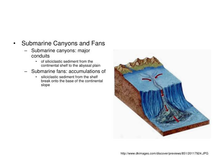Submarine Canyons and Fans