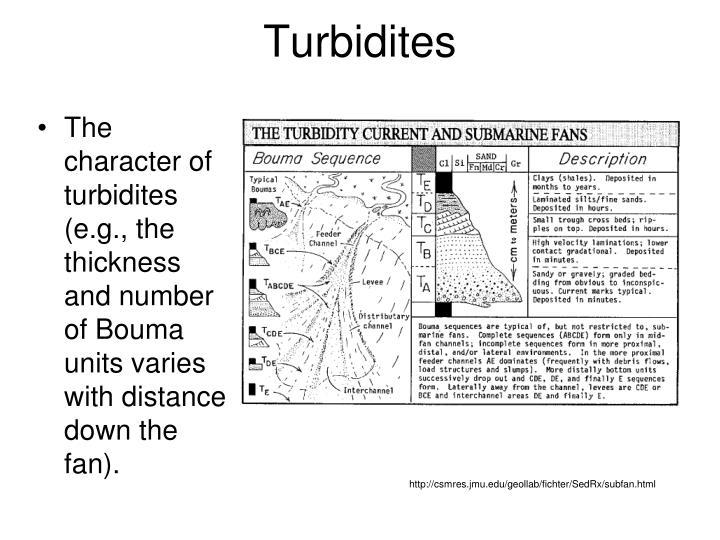 Turbidites