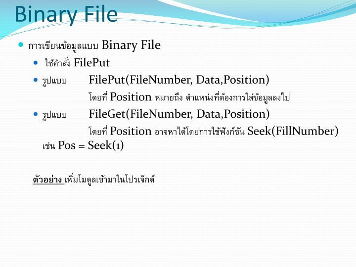 Binary File