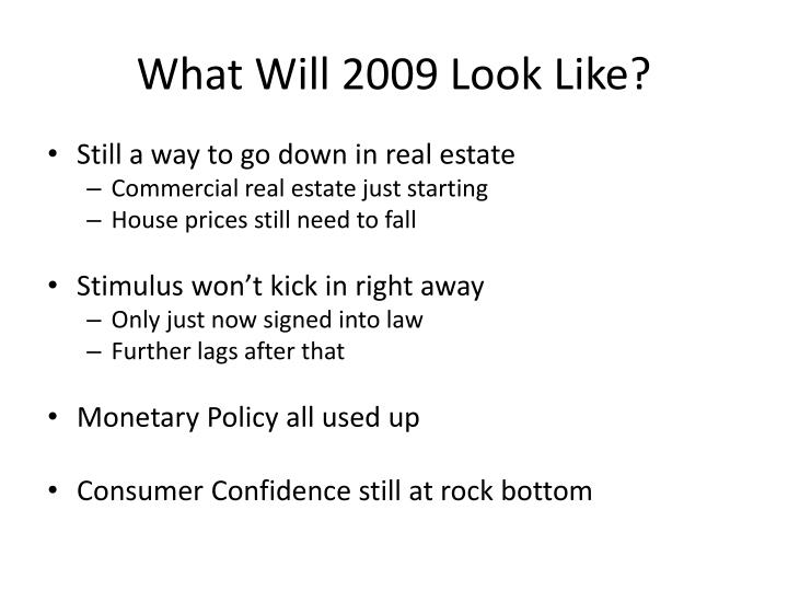 What Will 2009 Look Like?