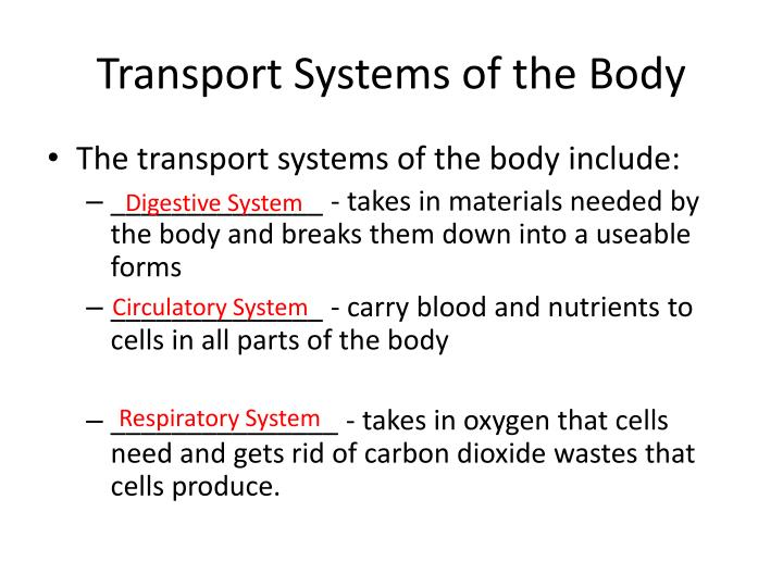 Transport Systems of the Body