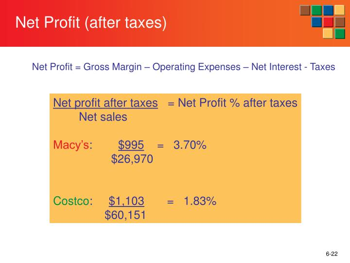 Net Profit (after taxes)