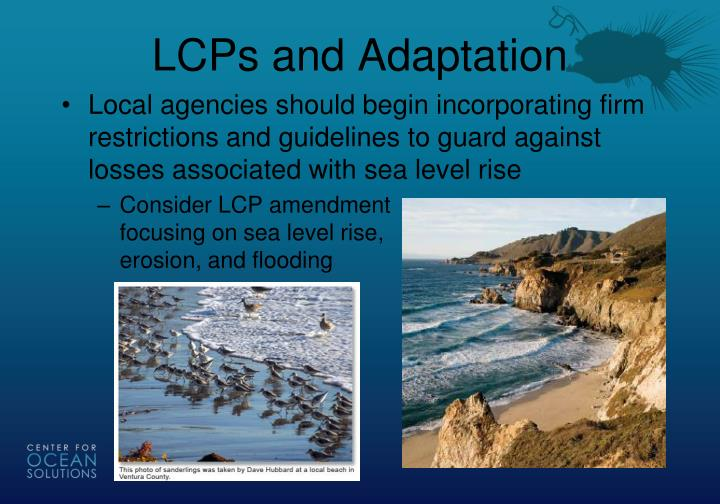 LCPs and Adaptation