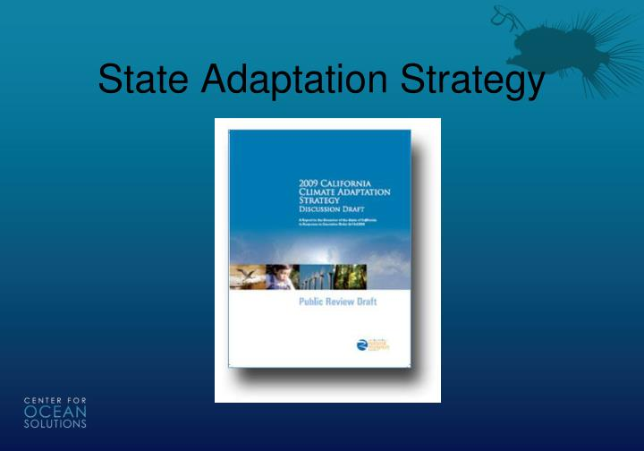 State Adaptation Strategy