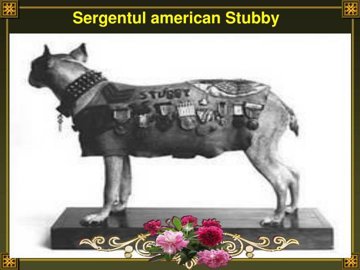 Sergentul american Stubby