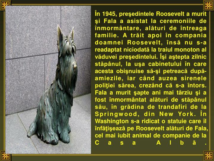 n 1945, preedintele Roosevelt a murit i Fala a asistat la ceremoniile de nmormntare, alturi de ntreaga familie. A trit apoi n compania doamnei Roosevelt, ns nu s-a readaptat niciodat la traiul monoton al vduvei preedintelui. i atepta zilnic stpnul, la ua cabinetului n care acesta obinuise s-i petreac dup-amiezile, iar cnd auzea sirenele poliiei srea, creznd c s-a ntors. Fala a murit apte ani mai trziu i a fost nmormntat alturi de stpnul su, n grdina de trandafiri de la Springwood, din New York. n Washington s-a ridicat o statuie care l nfieaz pe Roosevelt alturi de Fala, cel mai iubit animal de companie de la Casa Alb.