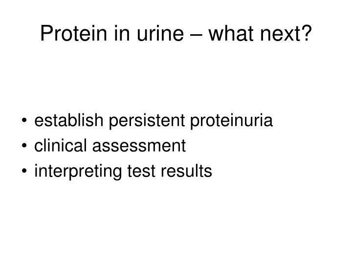 Protein in urine – what next?