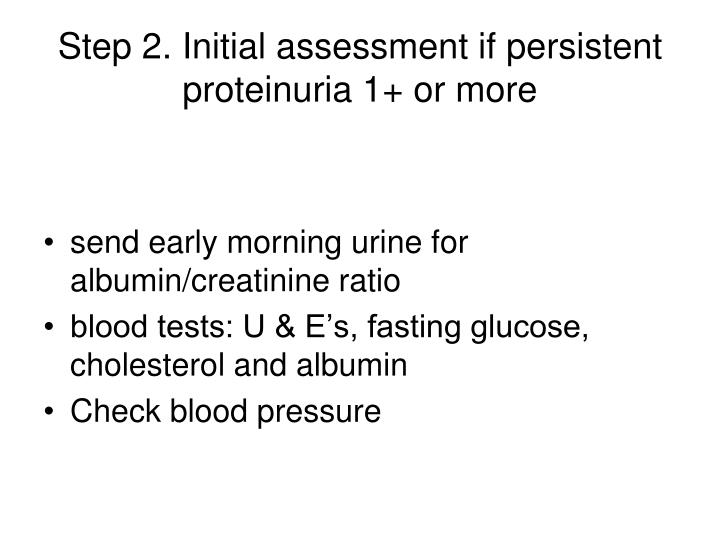 Step 2. Initial assessment if persistent proteinuria 1+ or more