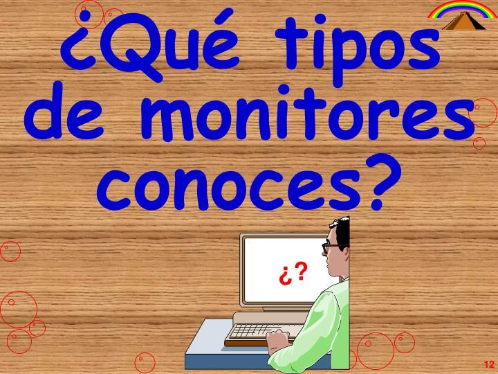 ¿Qué tipos de monitores conoces?