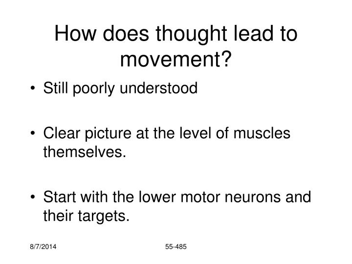 How does thought lead to movement?