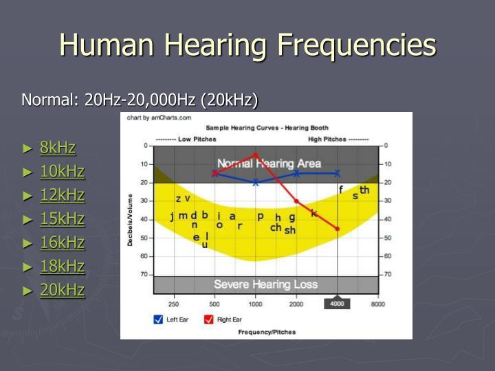 Human Hearing Frequencies
