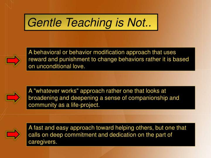 Gentle Teaching is Not..
