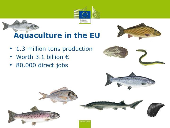 Aquaculture in the EU