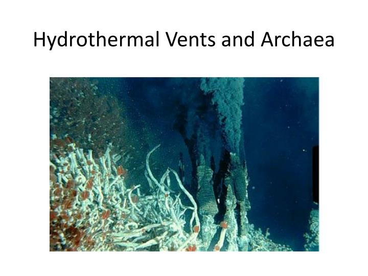 Hydrothermal Vents and Archaea