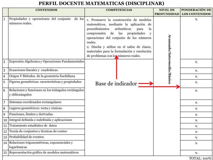 PERFIL DOCENTE MATEMATICAS (DISCIPLINAR)