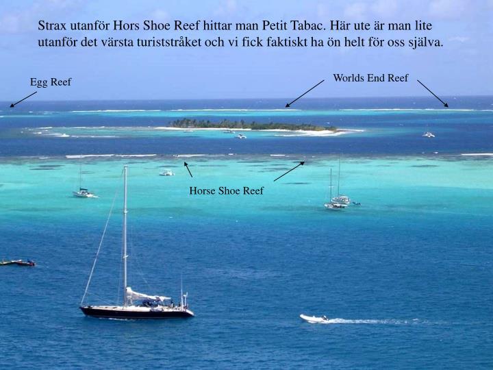 Strax utanför Hors Shoe Reef hittar man Petit Tabac. Här ute är man lite utanför det värsta turiststråket och vi fick faktiskt ha ön helt för oss själva.
