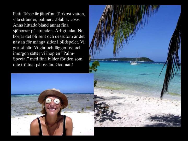 """Petit Tabac är jättefint. Turkost vatten, vita stränder, palmer…blabla…osv. Anna hittade bland annat fina sjöborrar på stranden. Ärligt talat. Nu börjar det bli sent och dessutom är det nästan för många sidor i bildspelet. Vi gör så här: Vi går och lägger oss och imorgon sätter vi ihop en """"Palm-Special"""" med fina bilder för den som inte tröttnat på oss än. God natt!"""