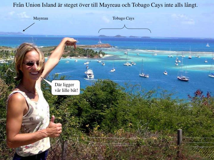 Från Union Island är steget över till Mayreau och Tobago Cays inte alls långt.