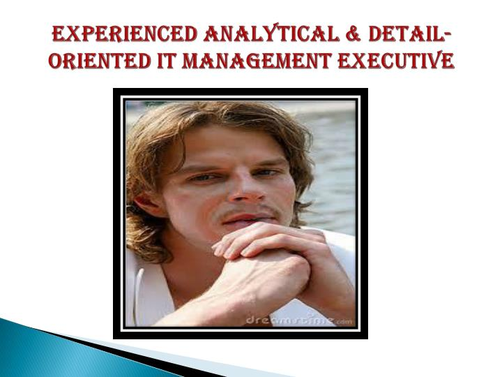 Experienced analytical detail oriented it management executive