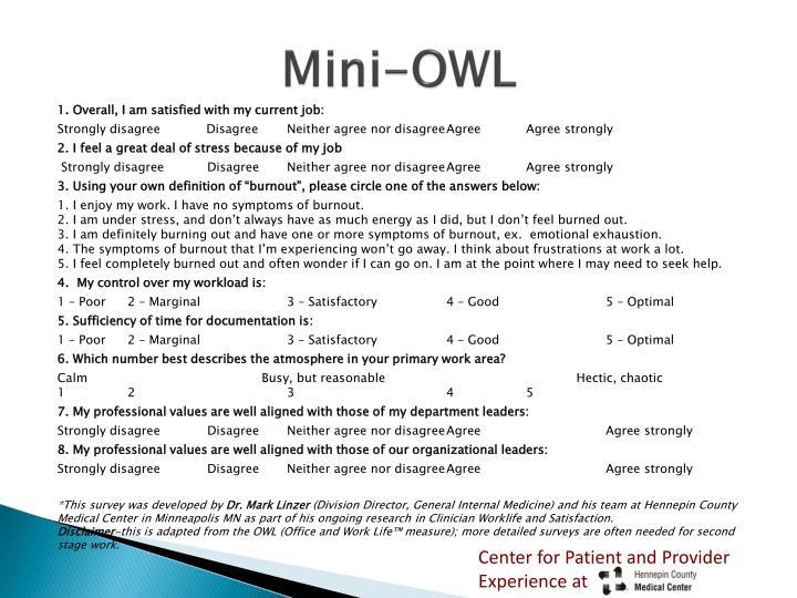 Mini-OWL