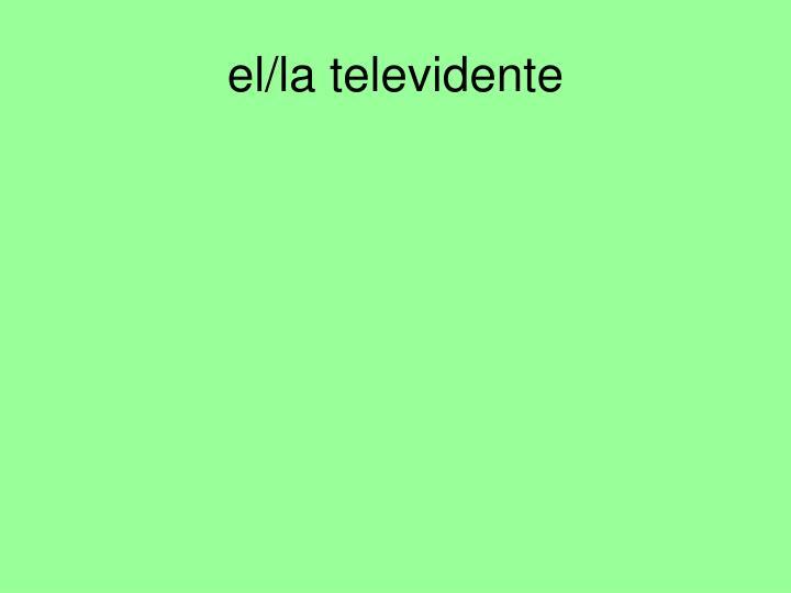 el/la televidente