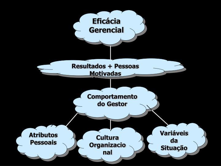 Eficácia Gerencial