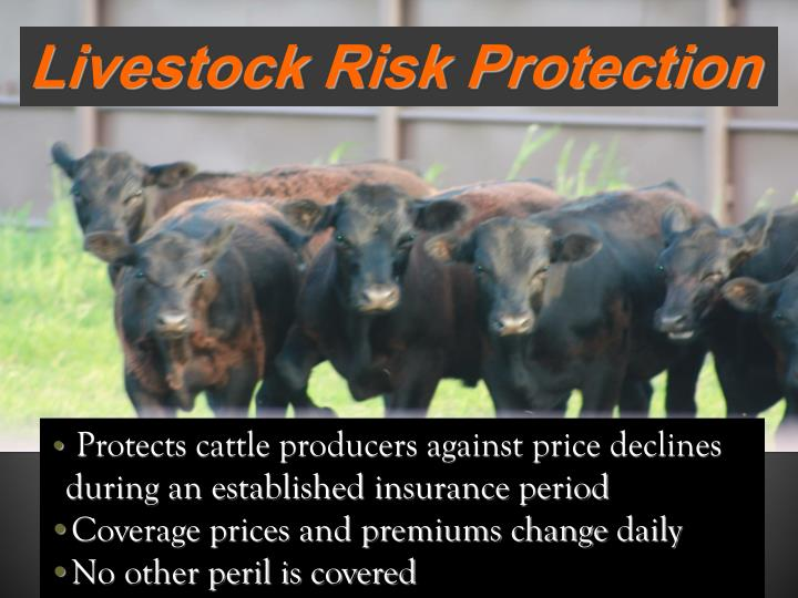 Livestock Risk Protection