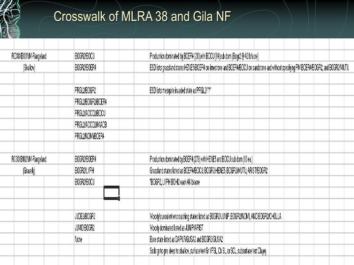 Crosswalk of MLRA 38 and Gila NF