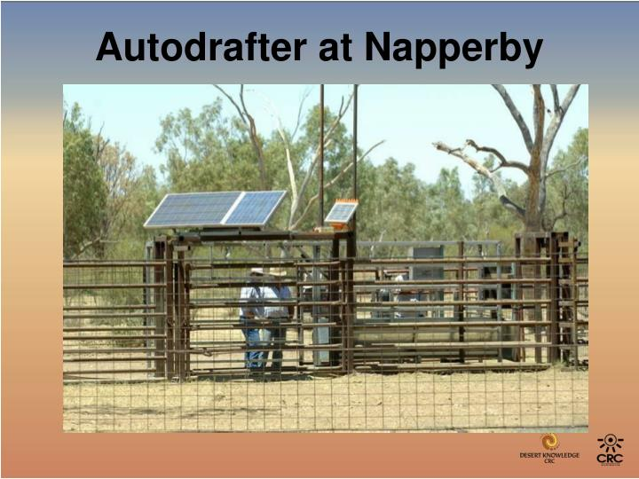 Autodrafter at Napperby