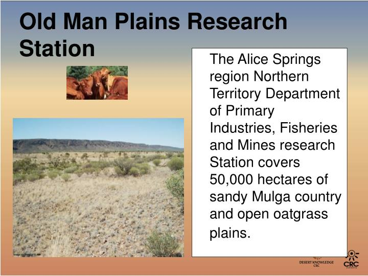 The Alice Springs region Northern Territory Department of Primary Industries, Fisheries and Mines research Station covers 50,000 hectares of sandy Mulga country and open oatgrass plains.